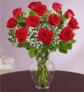 Valentine\'s Day roses